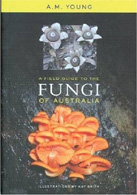 a-field-guide-to-the-fungi-