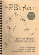plants-of-the-forest-floor